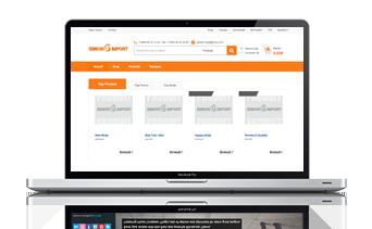 site-web-essor-import